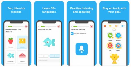 Duolingo Mobile